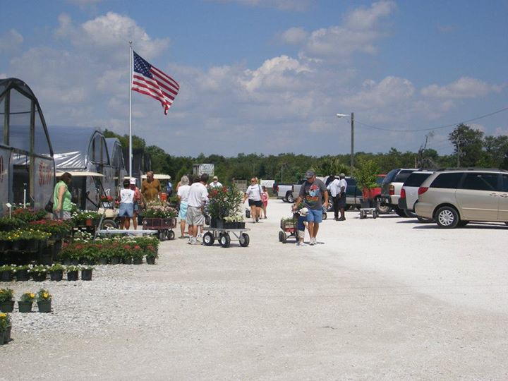 H Nursery Inc Is A Family Owned Business Serving The Sarasota Bradenton Area Since 1985